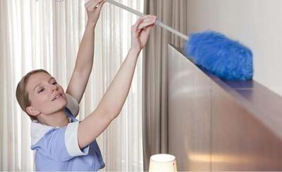 Asistenta por horas limpiezas cámara