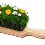 Limpieza de Primavera Empresas de Limpieza y conservación