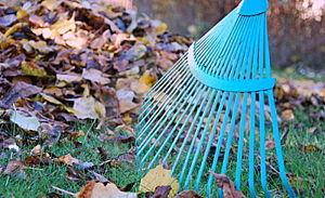 Limpieza de oto o 2 d 4 empresa de limpiezas en - Empresas de limpieza en fuenlabrada ...